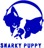 Snarky Puppy - booking information
